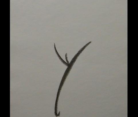 Erotico-Alphabet : Y