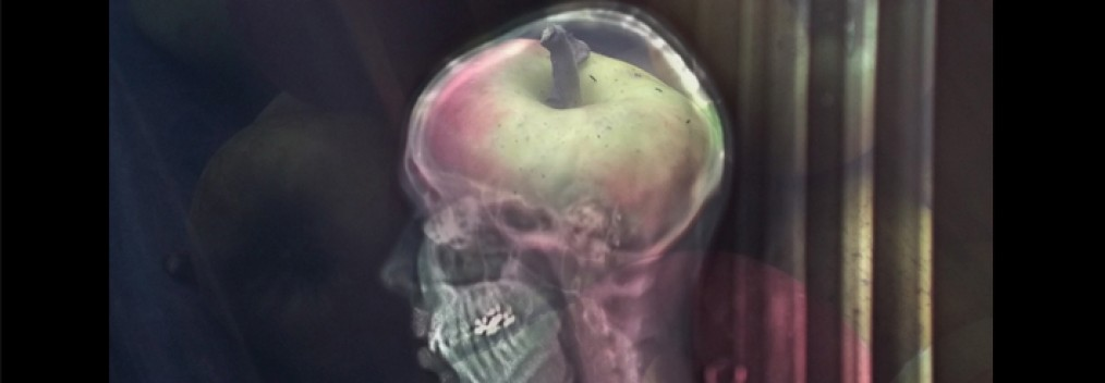Photography on glass, oac base : x-ray photograph in front of an apple • 9x16cm • GALLERY PHOTOGRAPHY
