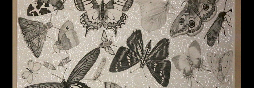 Pencil on paper with needle perforations backlighting • 44x54cm • More pic. > GALLERY DRAWINGS